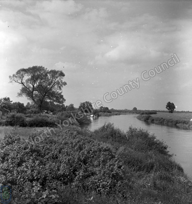 River Ouse, Cawood